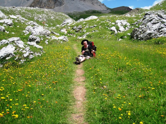 Heiða enjoying the mountain flowers