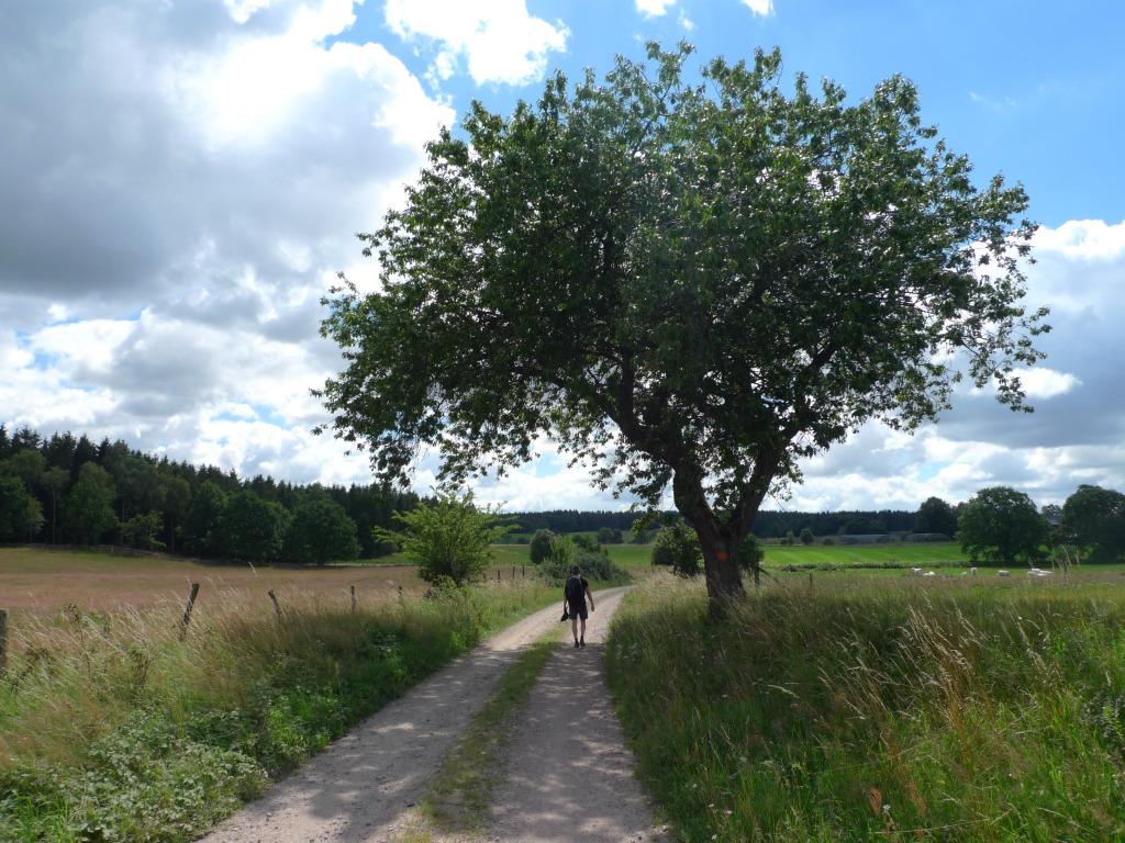 Bild från Skåneleden